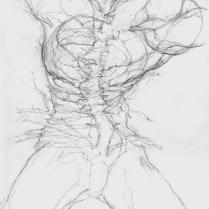 Sans titre. Crayon sur papier, 21 x 14 cm, 2008